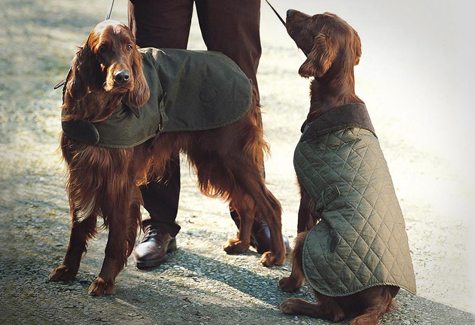 Barbour Waxed Cotton Dog Coat