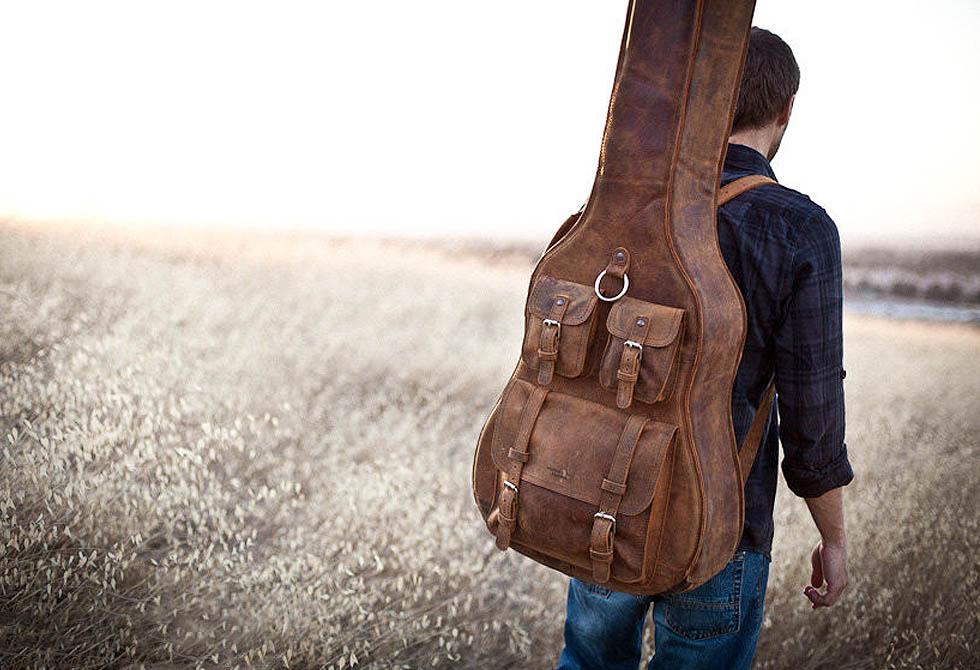 Arizona Guitar case