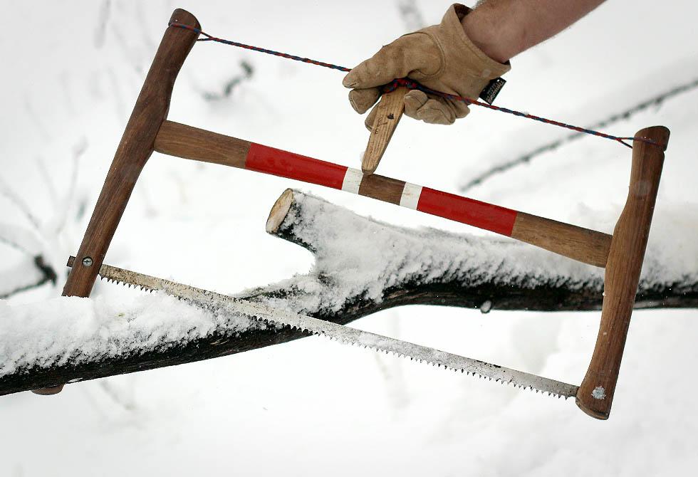 Fallman Bucksaw - lumberjac.com