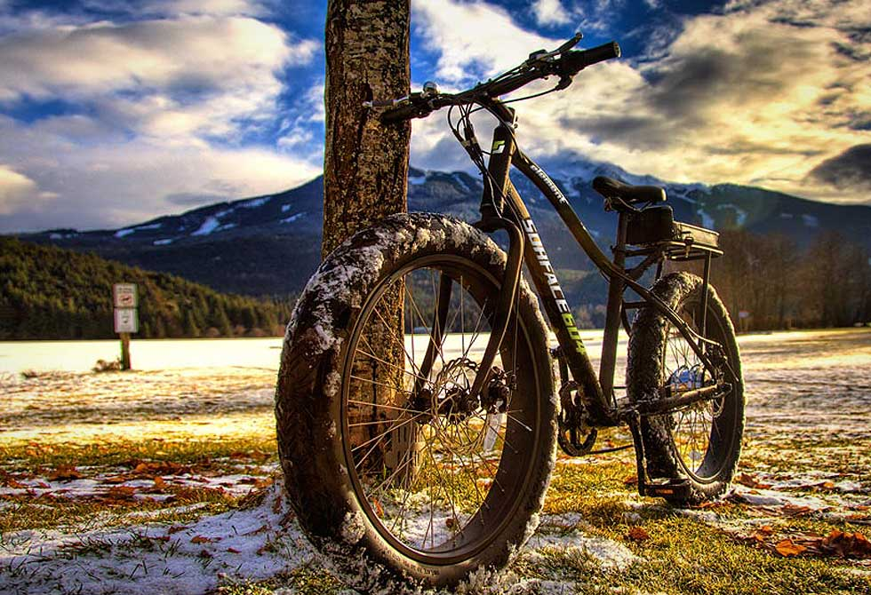 Electric Element Fat Bike by Surface604 - LumberJac