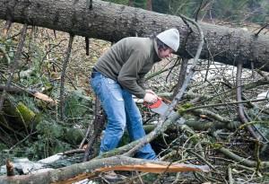Branch Stool4 - LumberJac