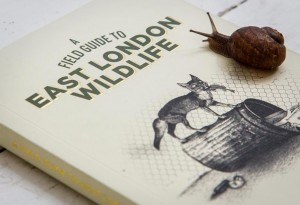 east-london-wildlife1-LumberJac-Lumberjack