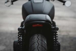 Twenty-2-Custom-Bike-5-LumberJac