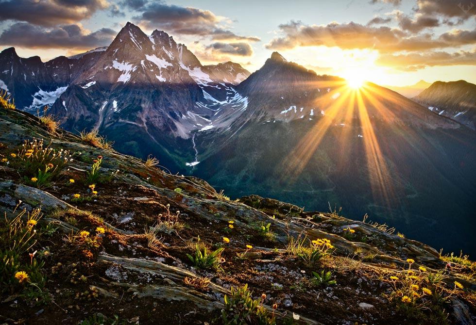 Patagonia-presents-Jumbo-Wild-2-LumberJac