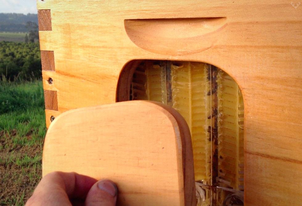 Flow-Beehive-5-LumberJac