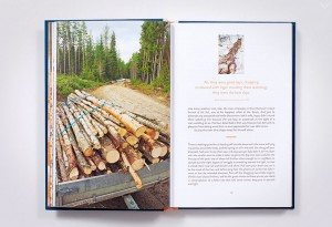 Norwegian-Wood-3-LumberJac
