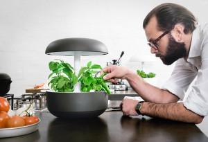 Plantui-6-Smart-Garden-1-LumberJac
