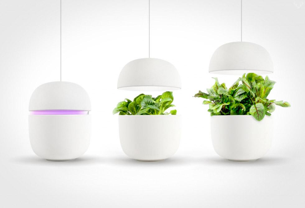 Plantui-6-Smart-Garden-4-LumberJac
