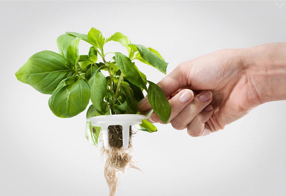 Plantui-6-Smart-Garden-5-LumberJac