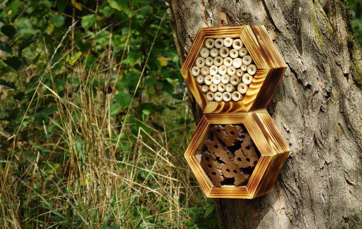 Bee Hotel LumberJac