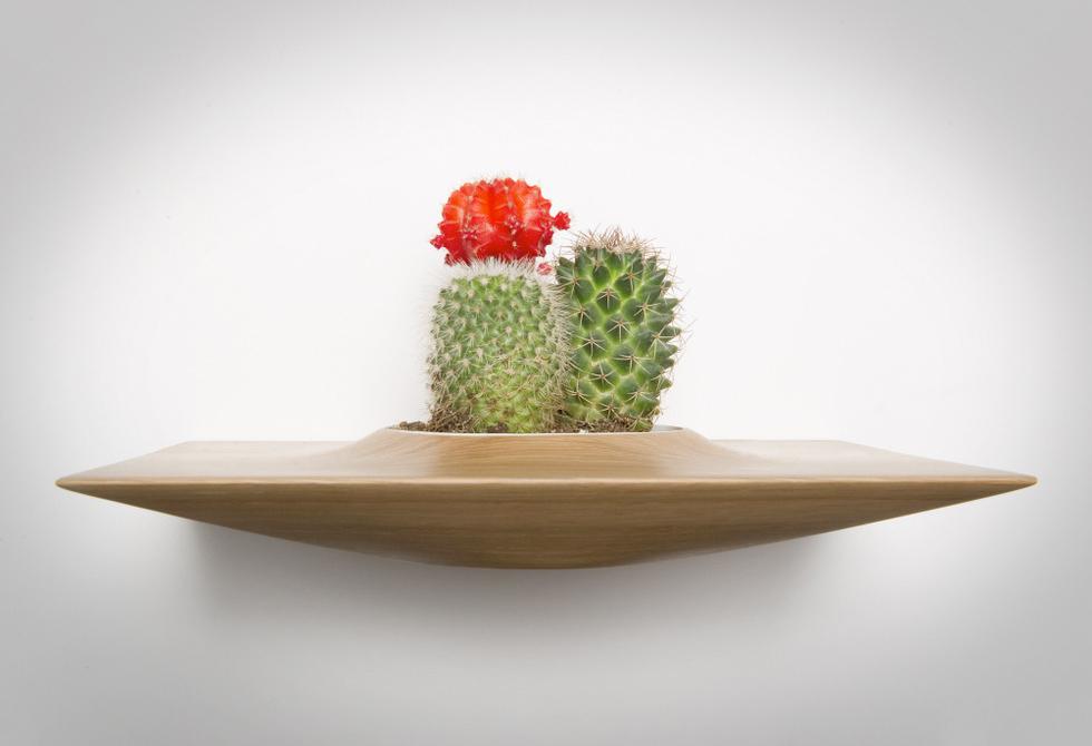 domenic fiorello studio Plant Pod