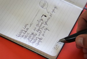 Livescribe-Notebooks-by-Moleskine2-LumberJac