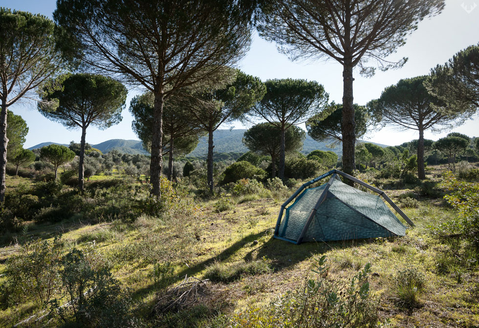 Heimplanet-Cairo-Camo-Fistral-Tent-LumberJac