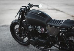 Twenty-2-Custom-Bike-3-LumberJac