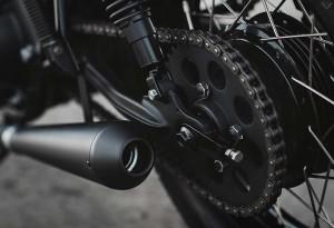 Twenty-2-Custom-Bike-6-LumberJac