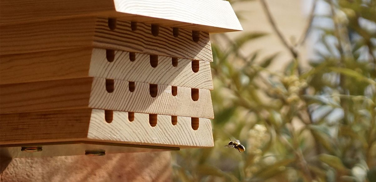 Hive Five Bee House